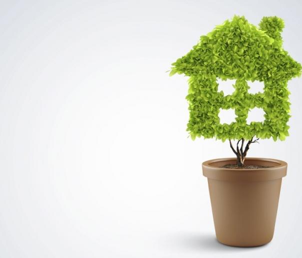 Maison verte - réno vert